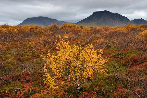 IJsland187-JM