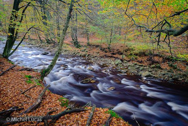 HogeVenen herfstfoto2-600px