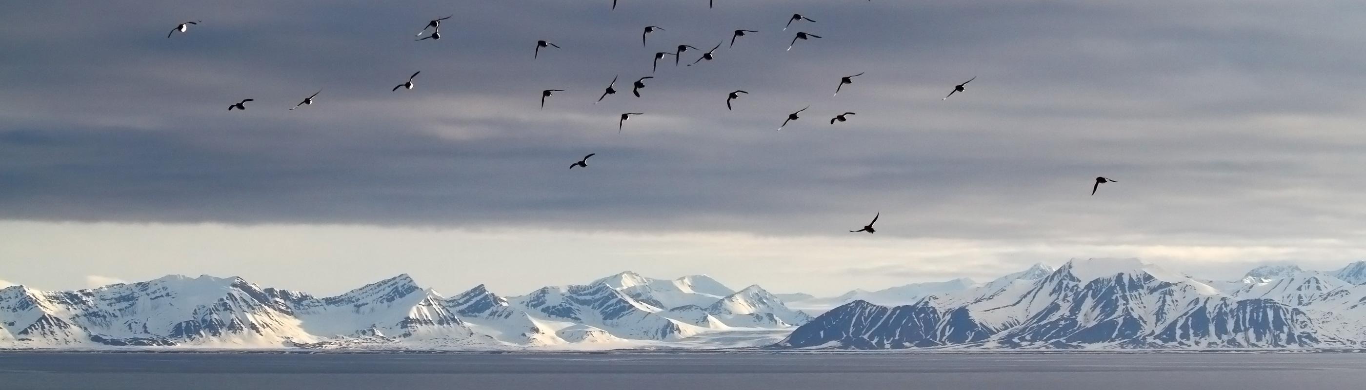 Spitsbergen-homeslider