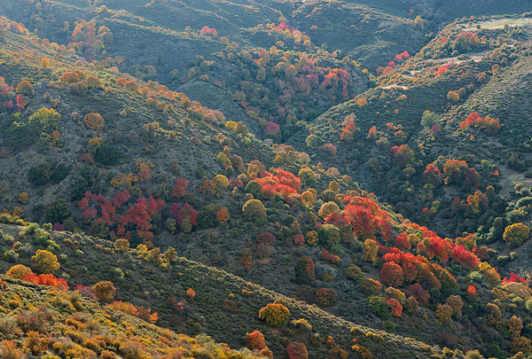 Andalusieherfst